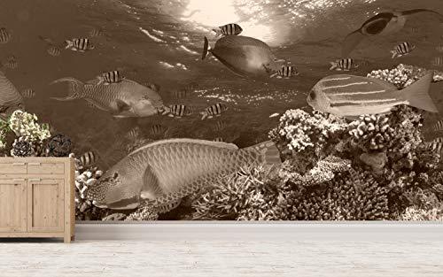 Vlies behang poster fotobehang panorama vissen Zuidzee Exoten 100 x 50 cm selbstklebend sepia