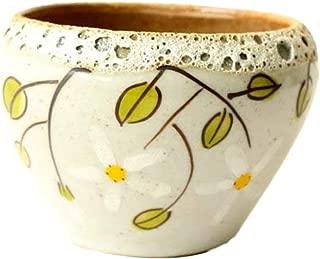 Best pots for succulents for sale Reviews