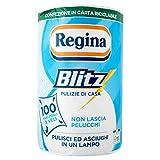 Regina Blitz Pulizie di Casa, 510g