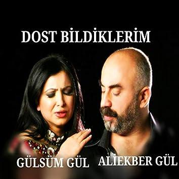 Dost Bildiklerim (feat. Gülsüm Gül)