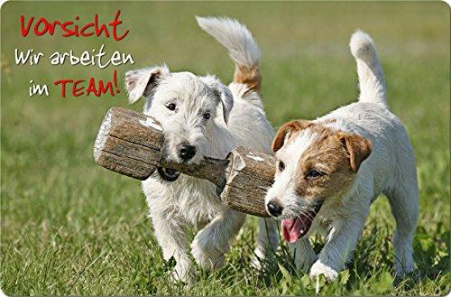 +++ JACK Parson Russell Terrier - Metall WARNSCHILD Schild Hundeschild Sign - JPR 01 T16