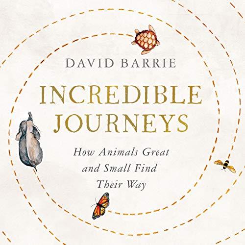 Couverture de Incredible Journeys
