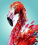 Ojmikmg Pintar por Numeros para Adultos Niños Principiantes -Pintura por Números Flamenco con Pinceles y Pinturas DIY Conjunto 40 x 50 cm Sin Marco