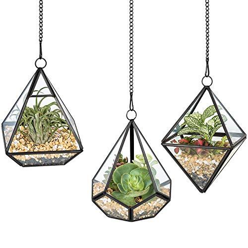 Mkono 3 Pcs Small Hanging Glass Terrarium Geometric Container Vertical Modern Planter Windowsill Decor DIY Display Box Centerpiece Gift for Succulent Fern Moss Air Plants Miniature Fairy Garden