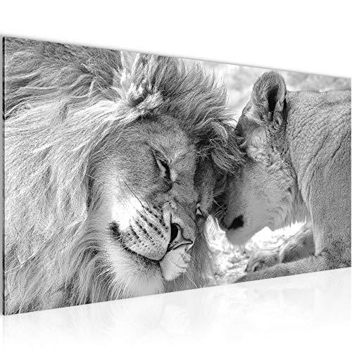 Bilder Löwen Afrika Wandbild 100 x 40 cm Vlies - Leinwand Bild XXL Format Wandbilder Wohnung Deko Kunstdrucke - MADE IN GERMANY - Fertig zum Aufhängen 002112c