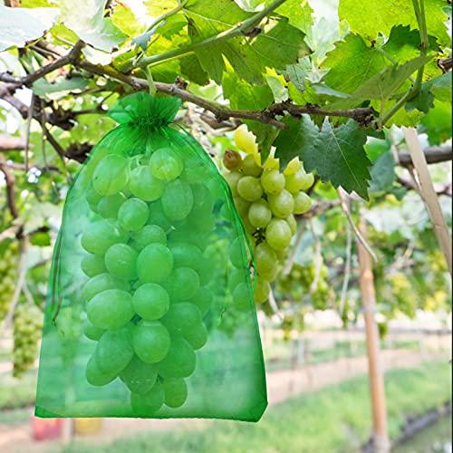 50 Pcs Bolsas Protectoras de Uvas 20 x 30 cm Bolsas para Frutales Bolsas Uvas Malla Contra Avispas Pájaros Moscas de la Cereza y Otros Insectos