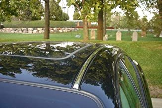 Best buick century window molding Reviews