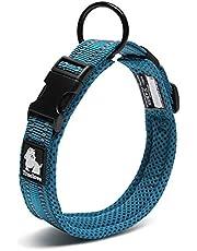 cocomall 犬首輪 犬の首輪 犬用訓練首輪 小型、中型、大型犬用首輪 ペット用品 3M反射材料 ナイロン製 通気性 弾力性 ソフト 調節可能 ハーネス リード (M, ロイヤルブルー)