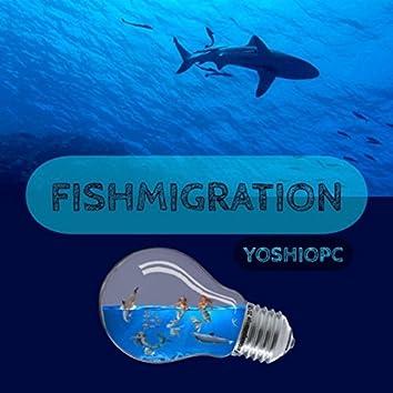 FISHMIGRATION