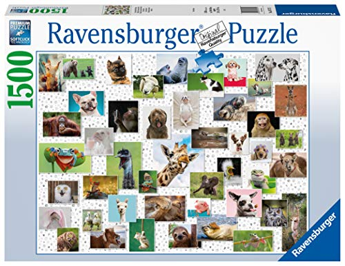 Ravensburger Puzzle 16711 Funny Animals Collage 16711-Funny Collage-1500 Teile, Mehrfarbig