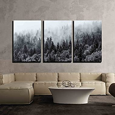 wall26-3 Piece Canvas Wall Art - Misty Forests of Evergreen Coniferous Trees in an Ethereal Landscape - Modern Home Decor Stretched and Framed Ready to Hang - 24 x36 x3 Panels