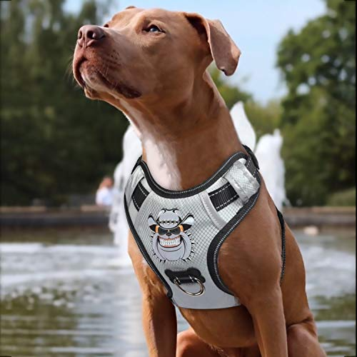 Babyltrl Silver Big Dog Harness No-Pull Anti-Tear Adjustable Pet Harness Reflective Oxford Material Soft Vest for Medium Large Dogs Easy Control Harness (M, Silver)
