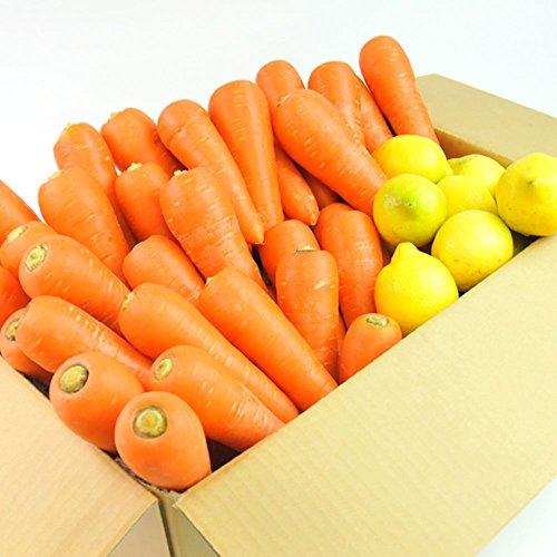 にんじん 野菜セット( 無農薬にんじん10kg+レモン1kg )にんじん : 農薬・化学肥料不使用栽培 訳あり