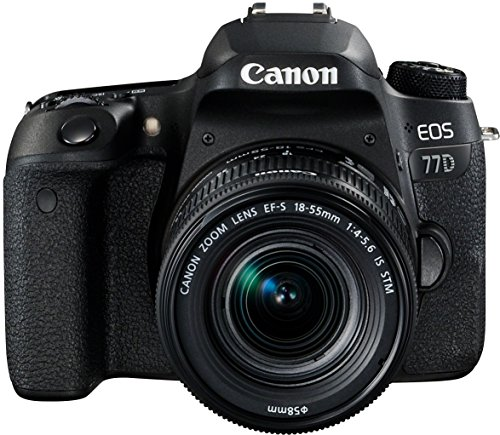 Canon EOS 77D DSLR Digitalkamera - mit Objektiv EF-S 18-55mm F4-5.6 IS STM Objektiv (24,2 Megapixel, 7,7 cm (3 Zoll) Display, APS-C CMOS Sensor, Full-HD) schwarz