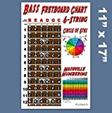 A New Song Music 6 String Bass Fretboard Poster - Nashville Numbering System, Circle of 5ths, Notes Instructional Chart 11x17