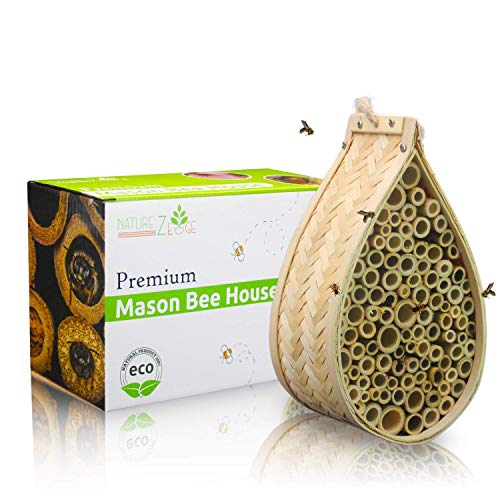 NatureZ Edge Mason Bee House, Natural Bamboo Mason Bee Hive, Supercharge Your Garden by Attracting The Perfect Non-Aggressive Pollinator Bees, Bee Hotel