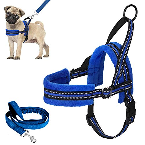 Lukovee Easy to Walk Dog Harness and Leash, Heavy Duty Adjustable Puppy Harness Soft Padded Reflective Vest Harness Anti-Twist 4FT Pet Lead Quick Fit Lightweight for Small Dog Cat (XX-Small, Blue)