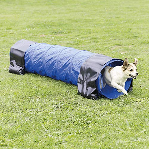 TRIXIE Pet Products Agility Basic Tunnel, Medium, Blue, 78.5 x 15.5 x 15.5 in. (3210)
