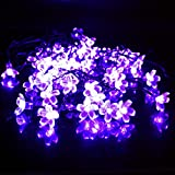 ZTBXQ Productos para el hogar 50LED Cadena de Luces solares Flor de melocotón Jardín al Aire Libre Navidad Festival de Luces de Hadas Iluminación Decorativa 7M Impermeable