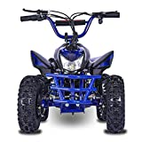 Fit Right 2020 Titan Kids 24V Mini Quad ATV, Dirt Motor Electric Four Wheeler Parental Speed Control, with 350W Motor Power Reserve, Large Tires & Wide Suspension (Blue)
