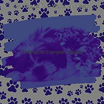 Feelings for Energetic Puppies