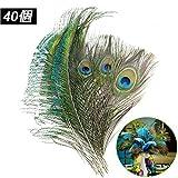 20個の天然孔雀の羽と20個の孔雀の剣の羽、目玉羽、ピーコック フェザー、結婚式の装飾/クラフト/パーティー/家の装飾のための10-12インチの孔雀の尾の目の羽40個セット