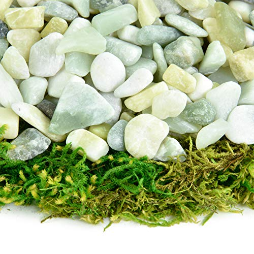Southwest Boulder & Stone Polished Pebbles | 10 Pounds of Natural, Decorative Stones | Hand-Picked, Premium Pebbles for Aquariums, Terrariums, Fish Tanks and Gardens | Jade, 3/8 Inch - 5/8 Inch