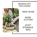 Leaves and soul tree training wire kit - 5 rolls (160ft) aluminum alloy bonsai plant training wire | wire cutter… 10 ✅ flexible but sturdy - our bonsai tree training wires are made of top-quality aluminum alloy, which is strong but easy to mold. They stand strong against rust and bends easily without breaking. ✅ meets different needs - this plant wire set has different sizes of training wires including 1. 0mm, 1. 5mm, 2. 0mm, 2. 5mm, and 3. 0mm wires, all with a length of 32 feet. Total of 160 feet of wire for all of your projects. They can also be used for handmade craft making, sculpture projects and jewelry making. ✅ cuts easily - our gardening kit comes with a high quality traditional bonsai wire cutter. This tool can cut the thickest aluminum wire effortlessly.