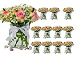 casavetro 6 oder 12 x kleine Vasen Glasflaschen C-Deko- KONKI- Weithals inklusiver Schleife Glasfläschchen Landhaus Vintage Vase Flasche Glas klar Mini Dekoflaschen (12 Stück)