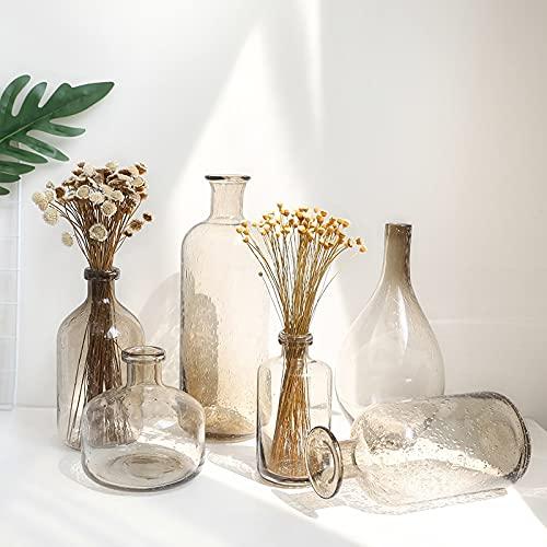 PPuujia Planta terrario Nordic Ins Jarrón de vidrio de burbujas gris humo terrario contenedores botella de boda decoración del hogar (color: 27 x 4 x 14 cm)