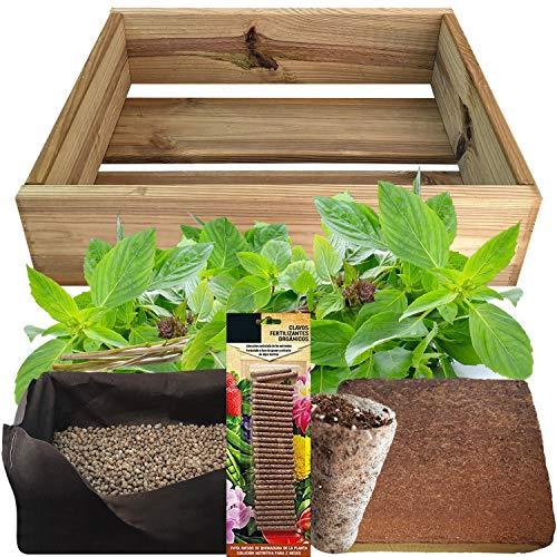 Kit de Cultivo con Maceta de Pino Tratada.