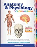 Anatomy and Physiology Coloring Book. Human Anatomy Coloring Book: Human Body Coloring Book. Anatomy Study Guide. Anatomy Coloring Book Medical School.
