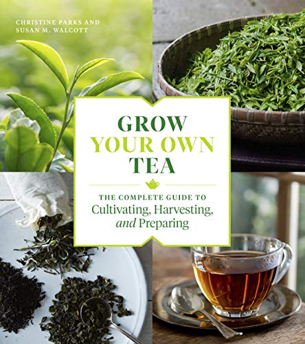 Grow Your Own Tea: The Complete Guide to Cultivating, Harvesting, and Preparing (English Edition)