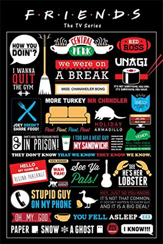 iPosters Friends TV Show Infographic Poster - 91.5 x 61 Centimeters (36 x 24 Inches) by