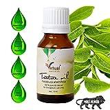 VIRTUAL Tea Tree Essential Oil for Aromatherapy - Tea Tree Essential Oil