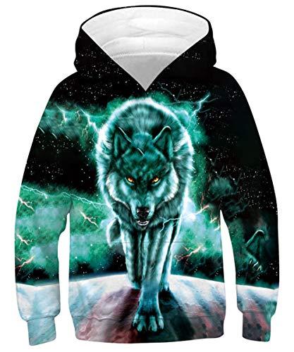 Goodstoworld 3D Kinder Kapuzenpullis Druck Hoodies Unisex Funny Kapuzenpullover Jungen Mädchen Kapuze Pullis Langarm Sweatshirt mit Taschen 12-13 Jahre
