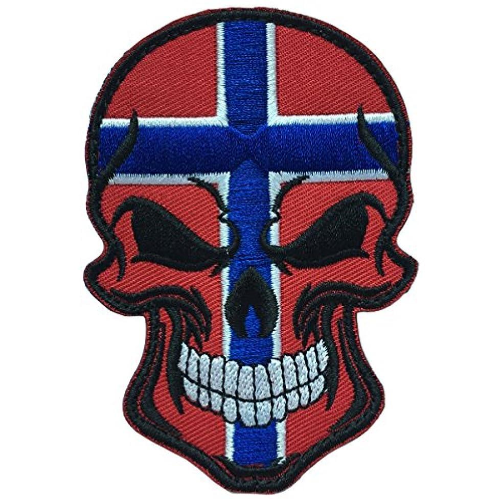 SpaceCar Skull Head w/Flag of Norway Military Tactical Morale Badge Hook Loop Fastener Patch 3.54