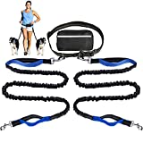 Hands Free Dog Leash for Running Walking Training Hiking, Dual-Handle Reflective Bungee, Poop Bag Dispenser Pouch, Adjustable Waist Belt, Shock Absorbing, Ideal for Medium to Large Dogs (for 2 Dogs)