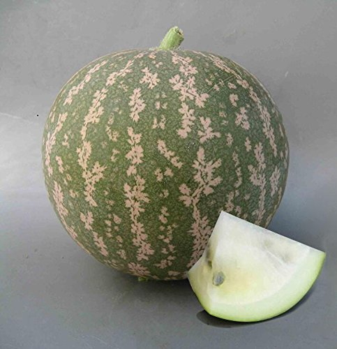 Livraison gratuite 11 des espèces rares Graines de pastèque chinoise à choisir des fruits délicieux melon d'eau graines bonsaïs - 50 Pièces 6