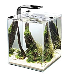 Cobalt Aquatics Microvue3 Aquarium Kit - Best Nano Reef Fish Tanks and Aquariums