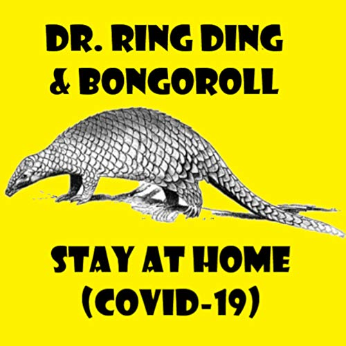 Stay at Home (Covid-19)