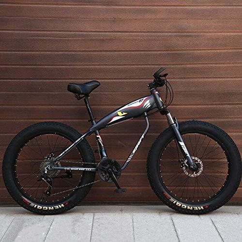 LJLYL Bicicleta de Montaña para Adultos Fat Tire Hardtail MTB Marco de Acero Carbono Doble Freno 26' Ruedas, color gris, tamaño 24 speed