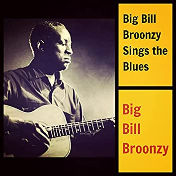 Big Bill Broonzy Sings the Blues