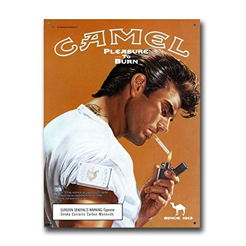 Camel Cigarettes Pleasure to Burn Vintage Retro Tin Sign Metal Sign TIN Sign 7.8X11.8 INCH
