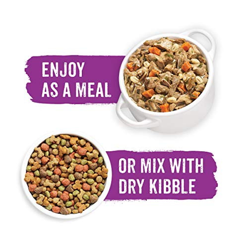 Purina Beneful Gravy Wet Dog Food, Prepared Meals Simmered Beef Entree - (8) 10 oz. Tubs