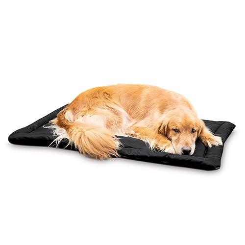 Surprising Indestructible Dog Bed Amazon Com Creativecarmelina Interior Chair Design Creativecarmelinacom