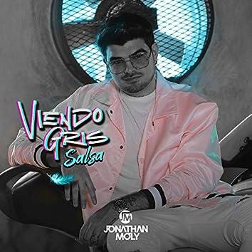 Viendo Gris (Salsa Remix)