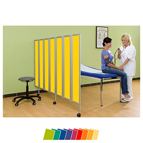 Sport-Tec Flexible Faltwand Raumteiler Sichtschutz Therapie Praxis, 6-flügelig 165x180 cm