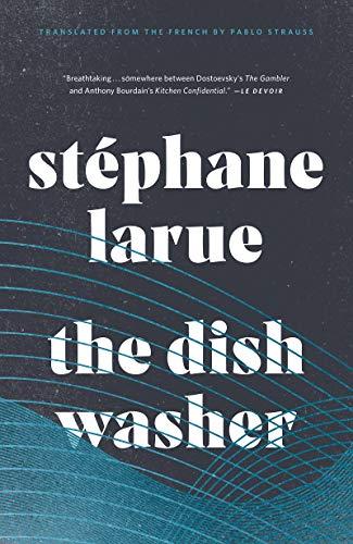 The Dishwasher (Biblioasis International Translation Series Book 26)