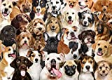 All The Dogs 1000 piece Jigsaw Puzzle